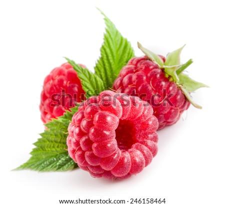 Raspberries isolated on white - stock photo