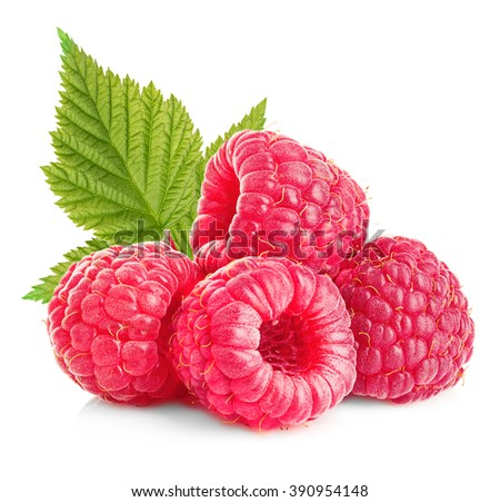 Raspberries with leaves close-up isolated on white background. - stock photo