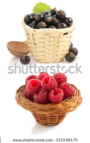 raspberry  and currants berry on white background
