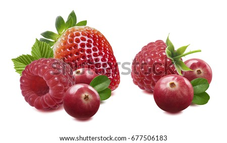 Raspberry cranberry strawberry double isolated on white background as package design element