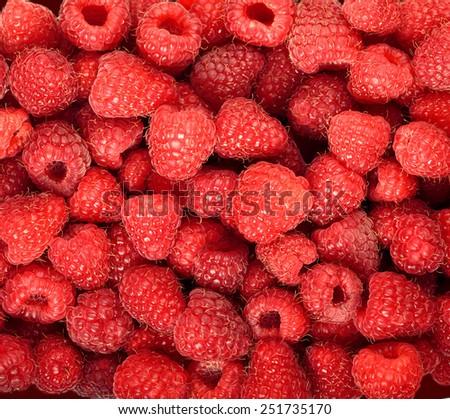 raspberry juicy ripe background - stock photo
