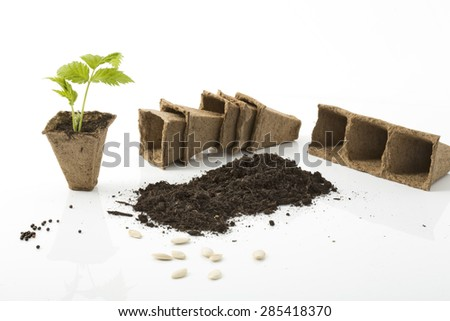 Raspberry plant, soil, peat pots and seeds on white background