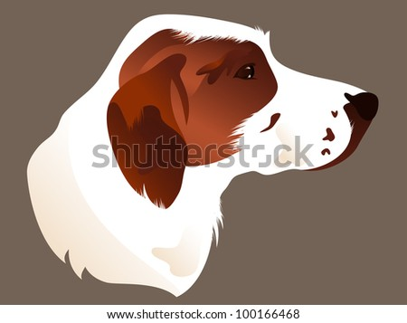 raster - hunting dog head illustration (vector version is available in my portfolio) - stock photo