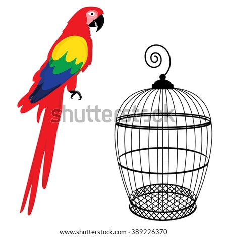 Raster illustration colorful macaw parrot and birdcage. Beautiful macaw. Cartoon red parrot - stock photo