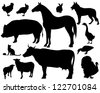raster - on the farm - set of detailed animals silhouettes - black outlines over white (vector version is available in my portfolio) - stock