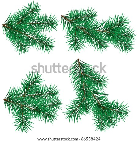 Raster set  Christmas tree branch for decorate . Easy to make your own one. .Vector version is accessible.