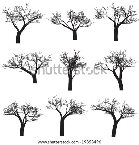 Raster - Silhouette of trees with branches. Isolated and in black.