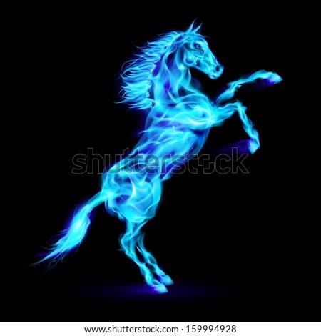 Raster version. Blue fire horse rearing up. Illustration on black background. - stock photo