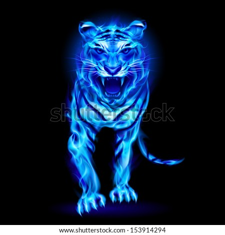 Raster version. Blue fire tiger isolated on black background.