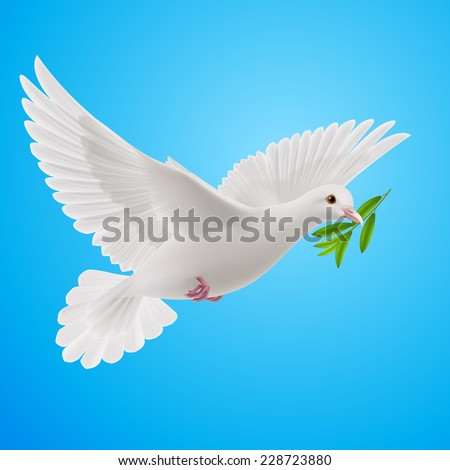 Raster version. Dove of peace flying with a green twig after flood  in sky