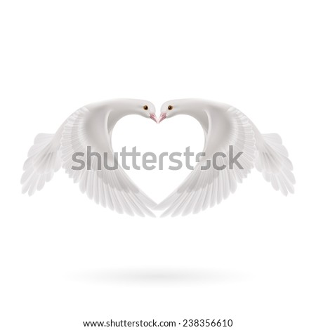 Raster version. Doves makes the shape of the wings of the heart  - stock photo
