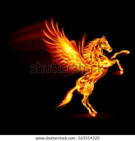 Raster version. Fire Pegasus rearing up. Illustration on black background - stock photo
