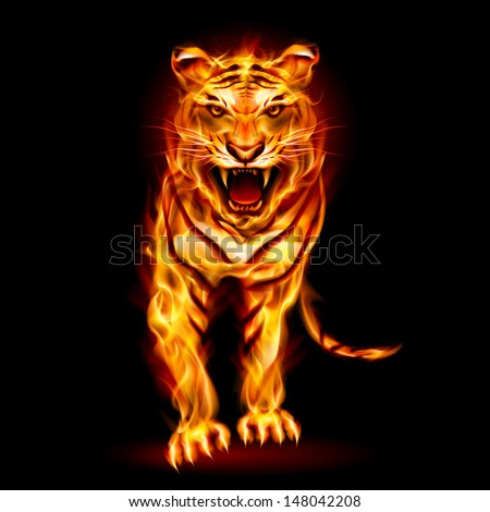 Raster version. Fire tiger. Illustration on black background for design - stock photo
