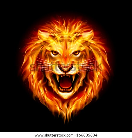 Raster version. Head of aggressive fire lion isolated on black background. - stock photo