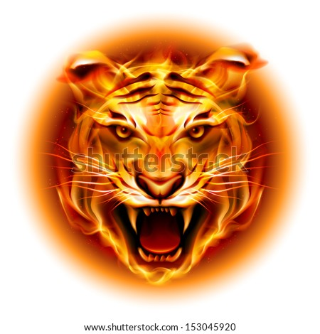 Raster version. Head of agressive fire tiger isolated on white background. - stock photo