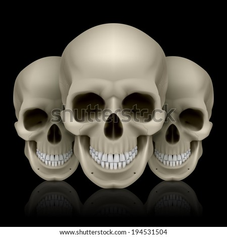 Raster version. Illustration of three skulls with reflection on black background - stock photo