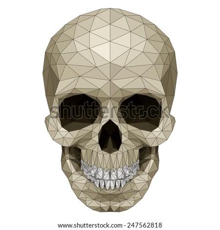 Raster version. Mosaic skull image. Illustration on white background  - stock photo