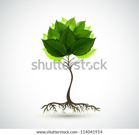 raster version of Season young tree with green leaves - stock photo