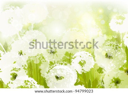raster version of some white dandelions on the glade - stock photo