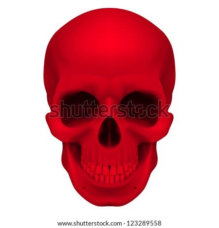 Raster version. Realistic red skull. Illustration for designer on a white background. - stock photo