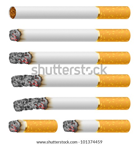 Raster version. Set of Cigarettes During Different Stages of Burn. Each is isolated on white.