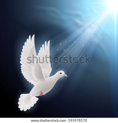 Raster version. White dove flying in sunlight against dark  blue sky as symbol of peace and hope - stock photo