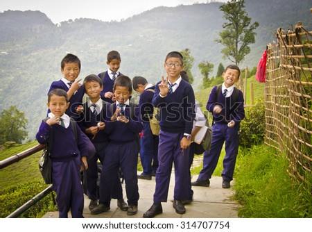 Ravangla, Sikkim , India, 27th May,2015 : A group of school boy Passing through popular Temi Tea Garden at Ravangla. The Temi Tea Garden in Ravangla, established in 1969. - stock photo
