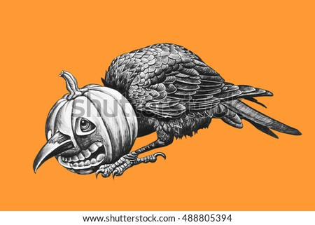 Raven head stuck in a pumpkin. Isolated on orange background. Pencil drawing illustration.