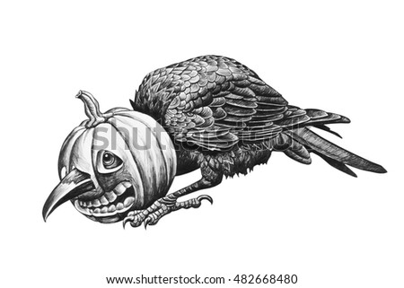 Raven head stuck in a pumpkin. Pencil drawing illustration.
