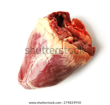 Raw animal heart isolated on white