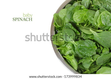 Raw Baby Spinach in a Sieve Isolated on a White Background. Copy Space. - stock photo