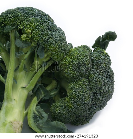 raw broccoli on white background