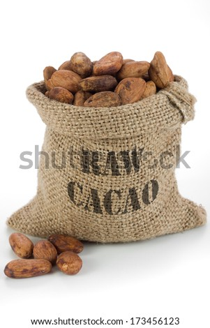 Raw cacao beans in burlap bag
