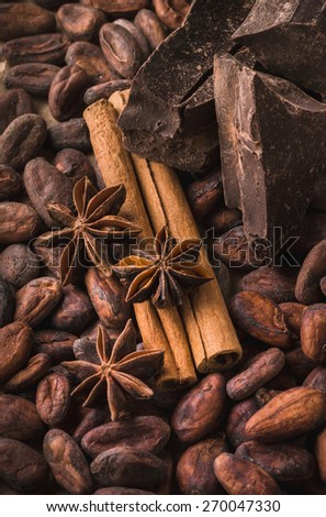 Raw cocoa beans, delicious black chocolate, cinnamon sticks, star anise,  beautiful composition, top view - stock photo