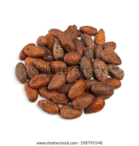 Raw cocoa beans isolated on white background - stock photo