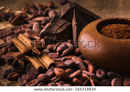 Raw cocoa beans, raw dark   homemade chocolate for rawfoodists, cinnamon sticks, star anise and cocoa powder in a wooden bowl - stock photo