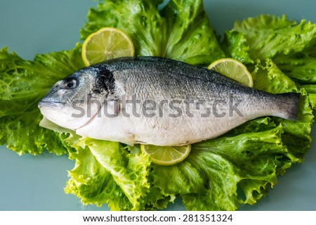 Raw dorado fish, gilthead bream or sea bream decorated with roman salads and pieces of lemons - stock photo