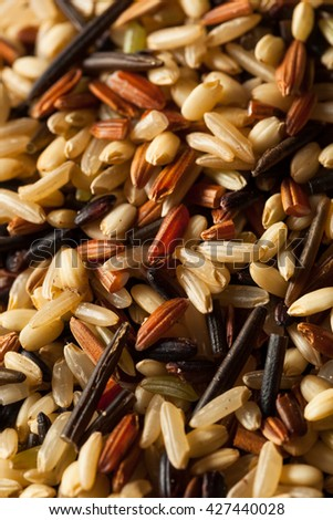 Raw Dry Organic Wild Rice in a Bowl