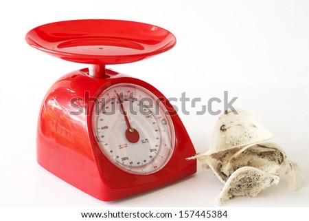 Raw Edible Bird's Nest and Kitchen Scales. - stock photo