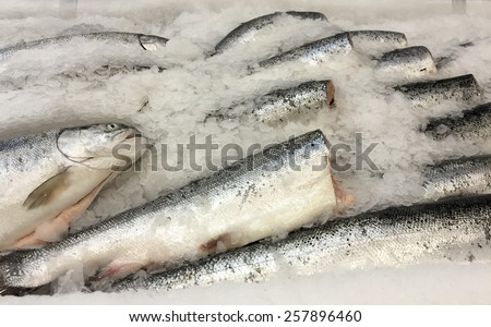 Raw fish on ice, sale seafood, fresh frozen fish background - stock photo