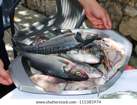 Raw fishes and calamari held by the chef - stock photo