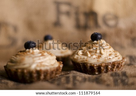raw food cupcakes with nutcream and blueberry on top, vegan ingredients only - stock photo