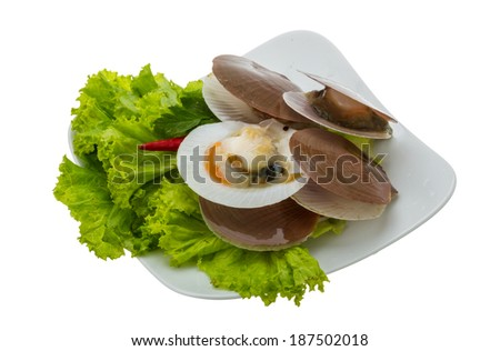 Raw fresh scallops with salad and chili