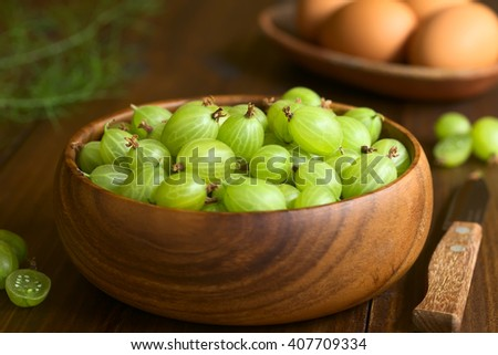 Raw gooseberries (lat. Ribes uva-crispa) in wooden bowl photographed on dark wood with natural light (Selective Focus, Focus on the upper gooseberries in the middle of the bowl) - stock photo