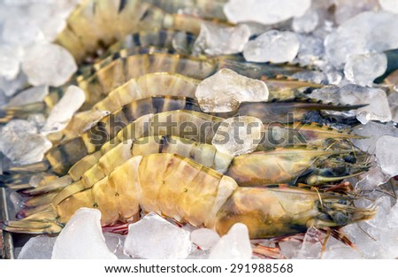 raw Lobsters seafood in ice exposition sea market. Seafood on ice - stock photo