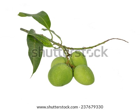 Raw mangoes sour with sweet sauce  thai food, Isolated on white background