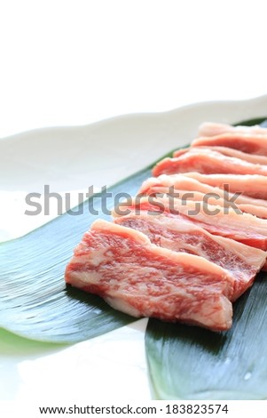 Raw meat laid out on a green leaf. - stock photo