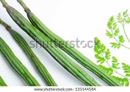 Raw moringa green color - stock photo
