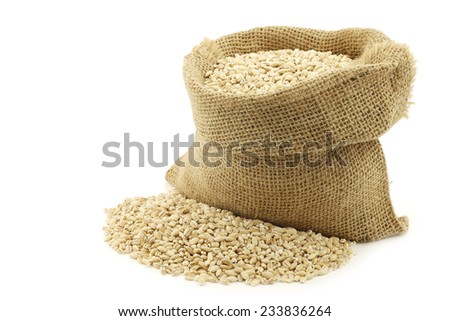 raw organic barley in a burlap bag on a white background - stock photo