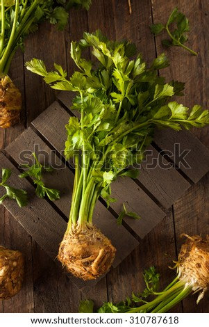 Raw Organic Celery Root Ready to Cut
